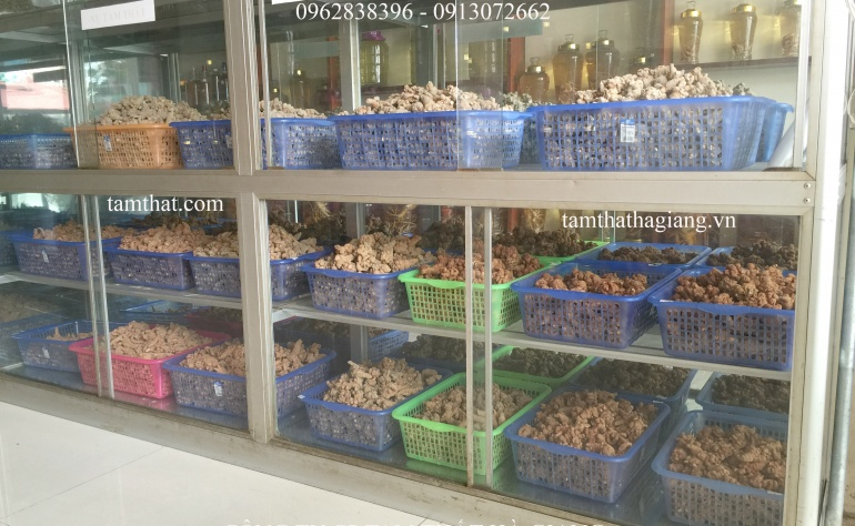 5 lý do tại sao bạn nên mua tam thất tại công ty cổ phần Tam Thất Hà Giang